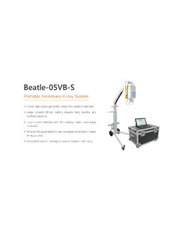 BEATLE 05VB S